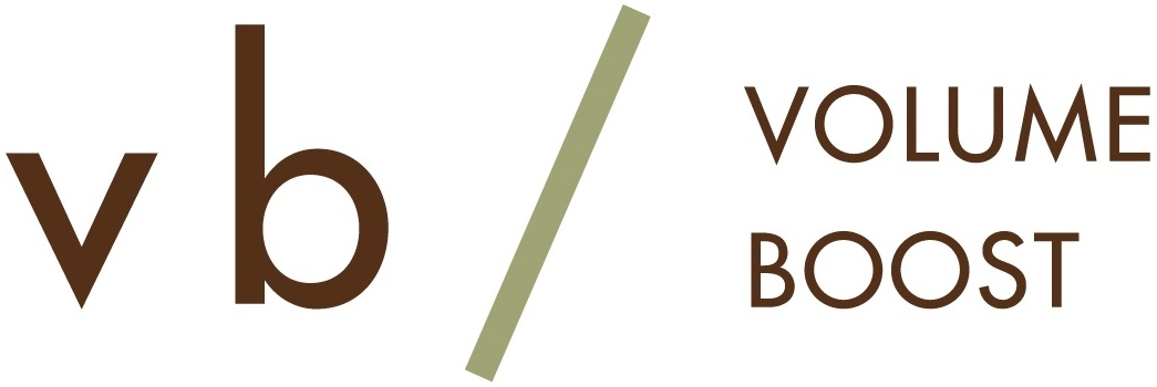 vb-logo-color2